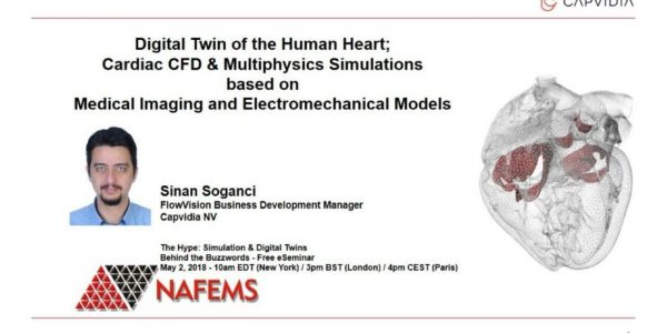 Digital Twin of the Human Heart